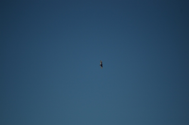 just-flying-oct-21-2007-42