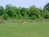 may-29-2005-06