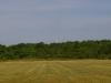 gliders-june-20-2010-49