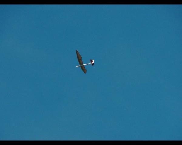 gliders-june-2010-09