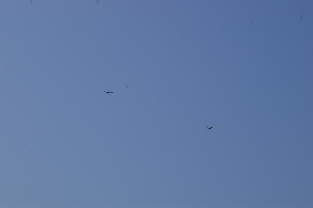 gliders-june-27-2010-22