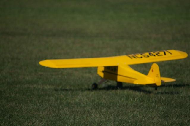 jims-cub-sept-1-2008-07