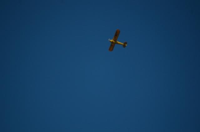 jims-cub-sept-1-2008-12