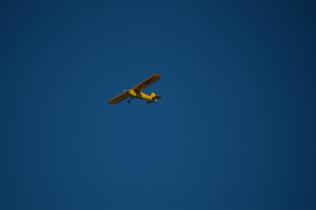 jims-cub-sept-1-2008-14