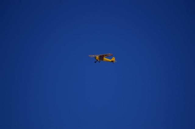 jims-cub-sept-1-2008-16