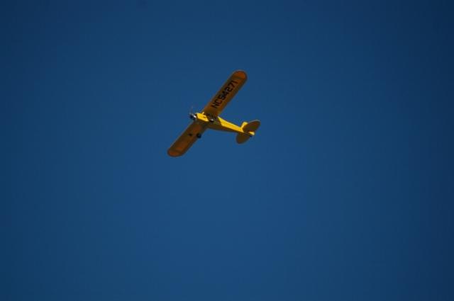 jims-cub-sept-1-2008-17