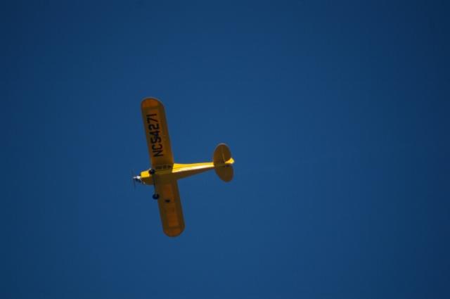 jims-cub-sept-1-2008-18