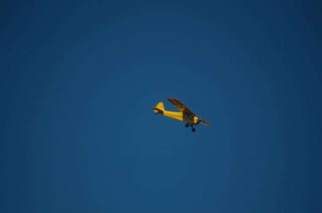 jims-cub-sept-1-2008-19