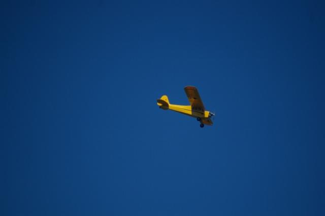 jims-cub-sept-1-2008-20