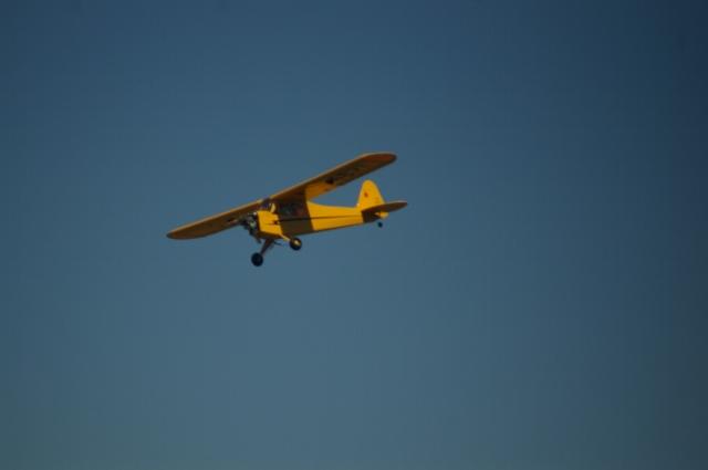 jims-cub-sept-1-2008-21
