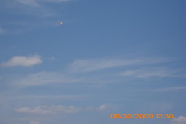 power-planes-2009-44