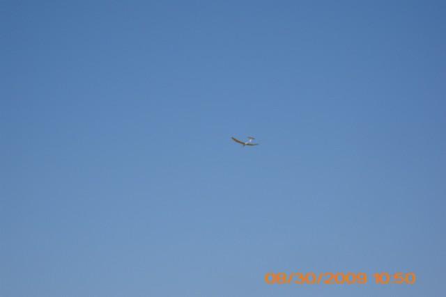 sailplanes-2009-49