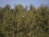 flying-sept-7-2008-59