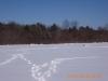 snow-flying-2010-024