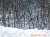 snow-flying-2010-026