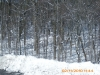 snow-flying-2010-031