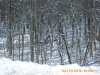 snow-flying-2010-036