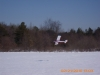 snow-flying-2010-048